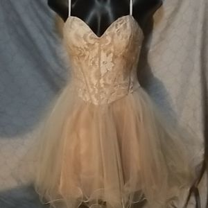 Nude lace bodice party dress fairy costume deb